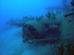 Gitmo Reef Plane